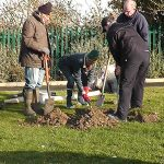 Fruit tree planting workshop