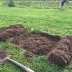 Bevendean tree planting prep