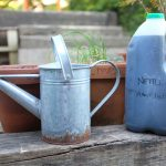 watering can and plant feed