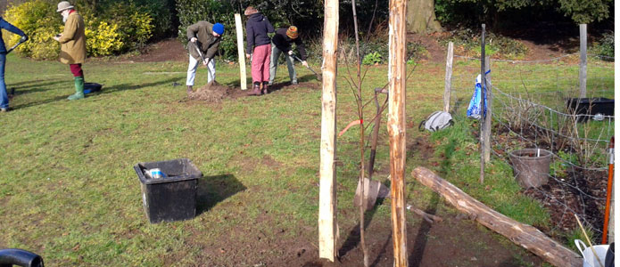https://brightonpermaculture.org.uk/wp-content/uploads/courses/planting/slideshow/treeplanting01.jpg