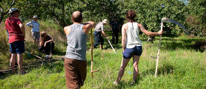 https://brightonpermaculture.org.uk/wp-content/uploads/courses/scything/slideshow/scything03a.jpg