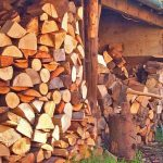 slideshow - woodfuel05.jpg