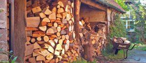 slideshow - woodfuel05.jpg