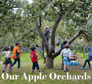 ourappleorchardsbook