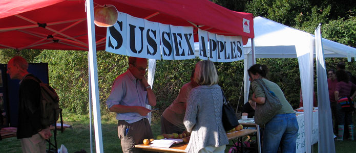 https://brightonpermaculture.org.uk/wp-content/uploads/fruit/sussexapples/sussexapples05.jpg
